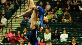 ACRO Exhibitions at 2011 WOGA Classic