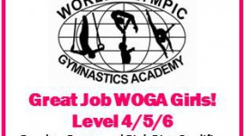 WOGA Results/ Pretty and Pink District Qualifier - 2012